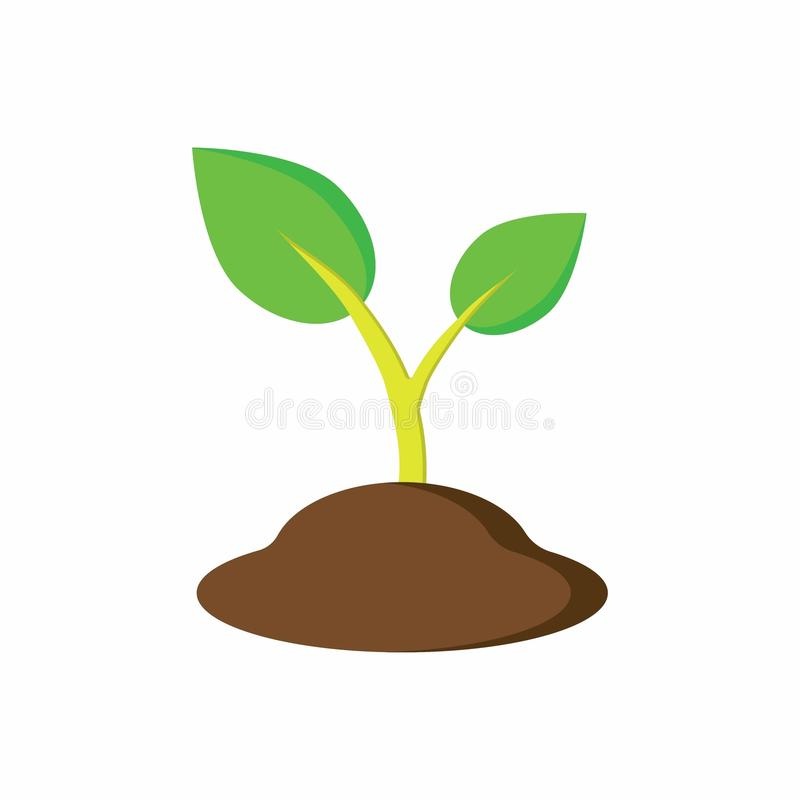 Plant in the ground. Green leaves, plant in the ground, growing of plants royalty free illustration