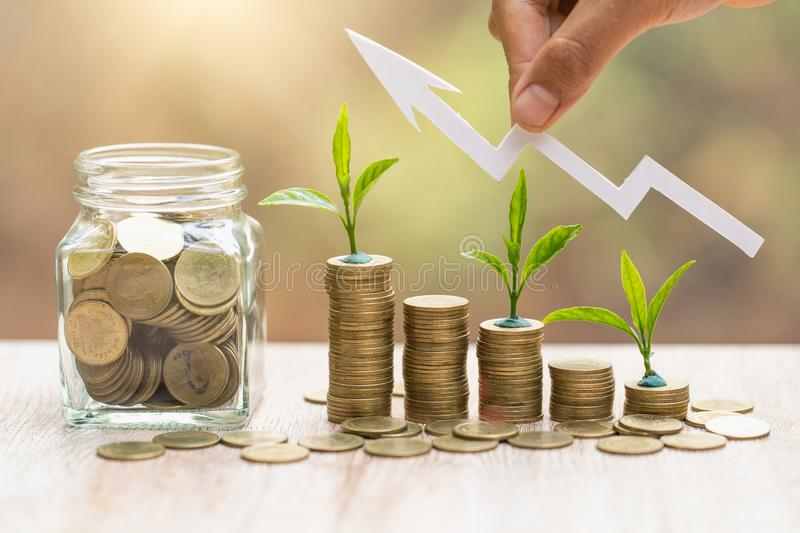 Plant growing in Coins glass jar for money saving and investment financial, concept for business, innovation, growth and money royalty free stock photos