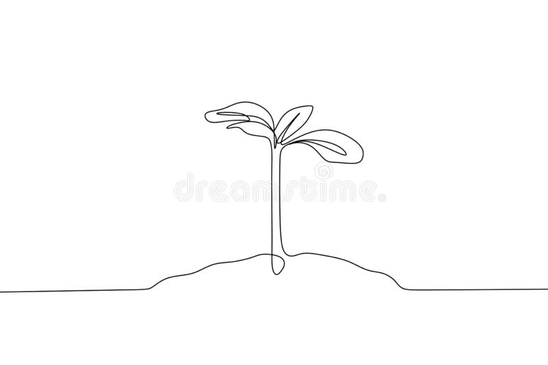Plant growing continuous line drawing vector illustration isolated on white background minimalist design. Sketch farm silhouette leaf growth organic sprout stock illustration