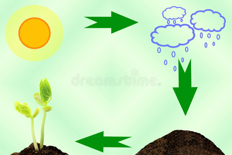Plant Growing Cycle concept sun cloud soil plant royalty free illustration