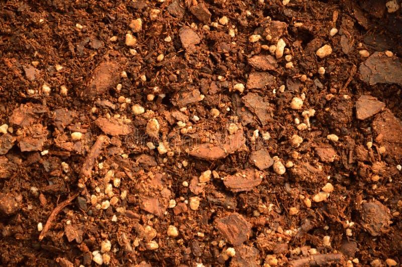 Organic Compost Mix stock photo