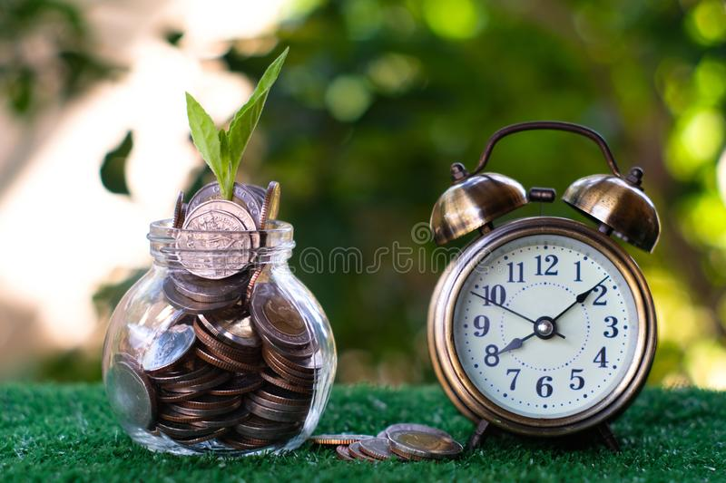 Plant growing from pile of coins with vintage clock beside. Time is money. Savings and investment concept. Copy space royalty free stock photo