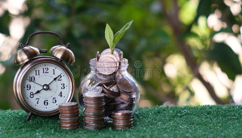 Plant growing from pile of coins with vintage clock beside. Time is money. Savings and investment concept royalty free stock image