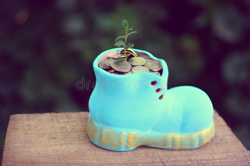 A plant growing from a stone-wear boot of coins royalty free stock photos