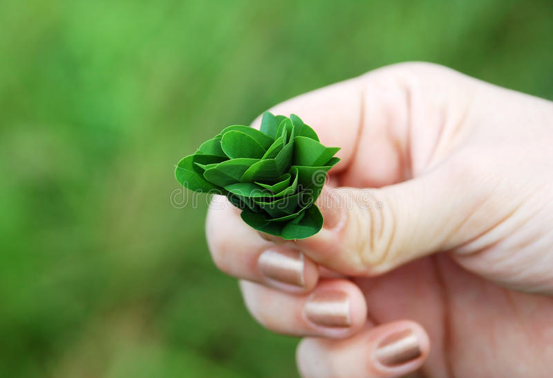 Download Plant in hand stock image. Image of flourish, forestation - 19920693