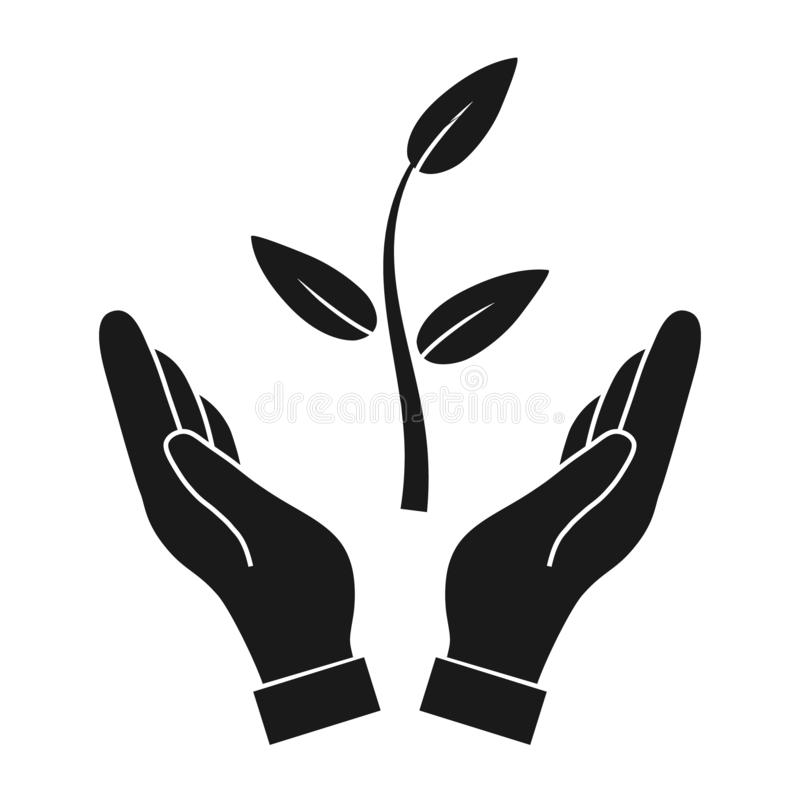Plant in hand vector icon stock photos