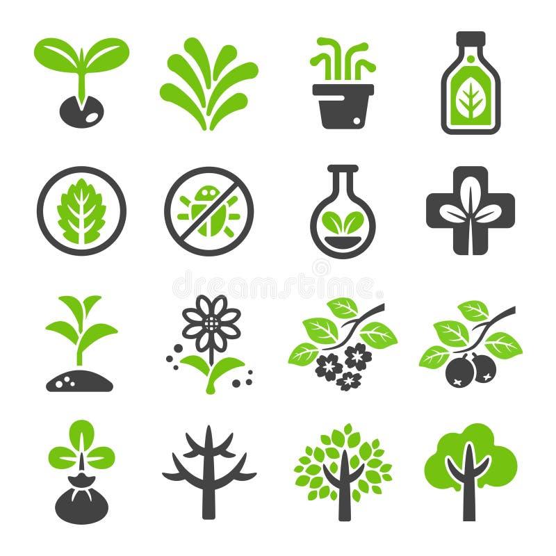 Plant icon set. Vector and illustration stock illustration