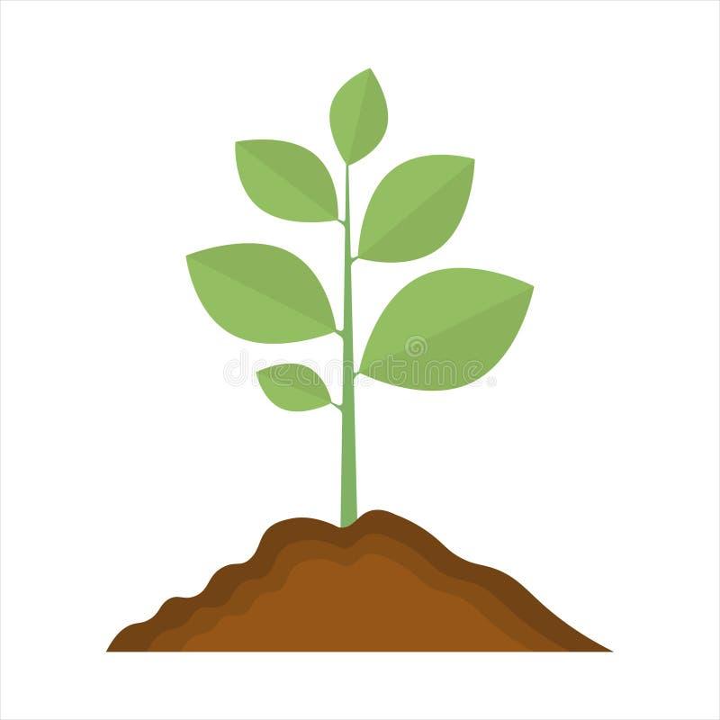 Plant icon. sign design illustration on white background.  royalty free illustration
