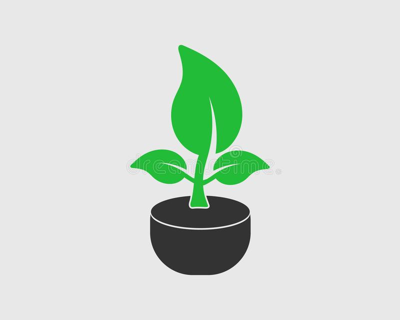 Plant Icon with tob. On gray background vector illustration