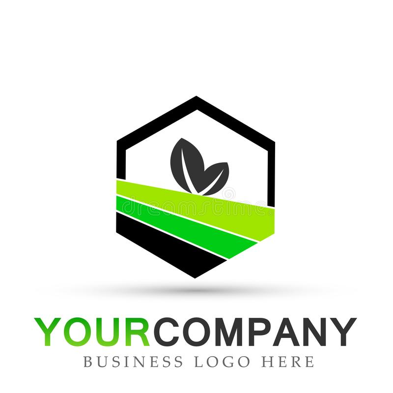 Plant leaf logo in hexagon shaped in green symbol icon vector designs on white background royalty free illustration