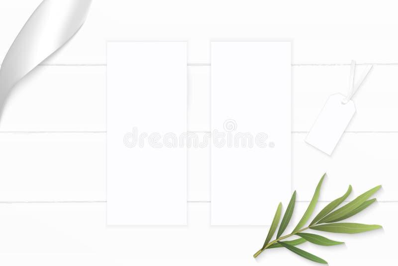 Plant lekmanna- för sammansättningspapper för bästa sikt elegant vitt etikett för blad för dragon och silverband på träbakgrund arkivfoton