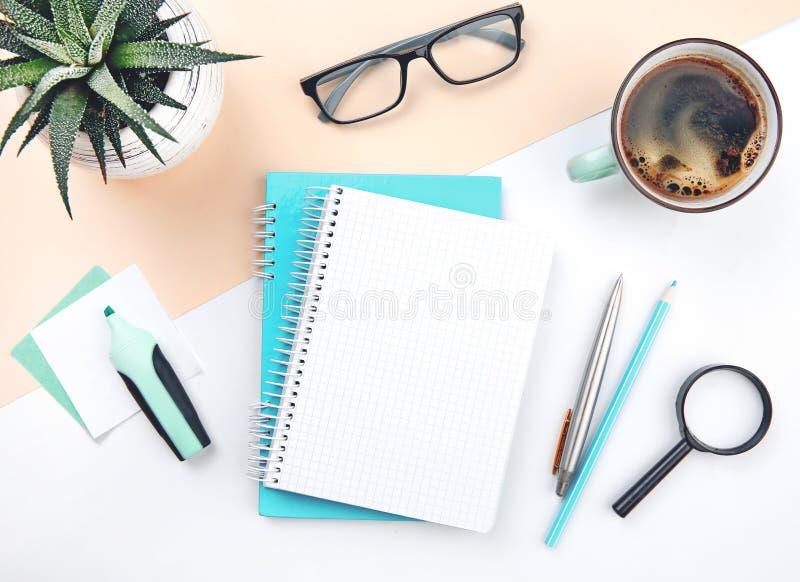 Plant lekmanna- kontorsskrivbord för bästa sikt, tom affärsidé för vitbok royaltyfria bilder