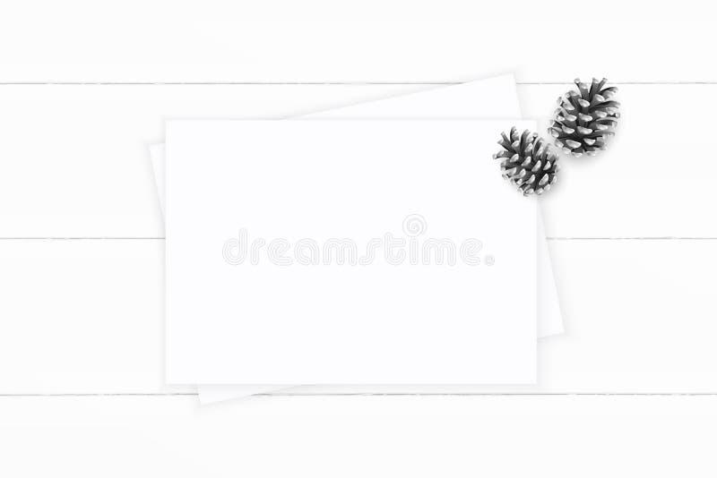 Plant lekmanna- papper för sammansättning för vit jul för den bästa sikten elegant sörjer kotten på träbakgrund Xmas-garneringdes royaltyfri fotografi