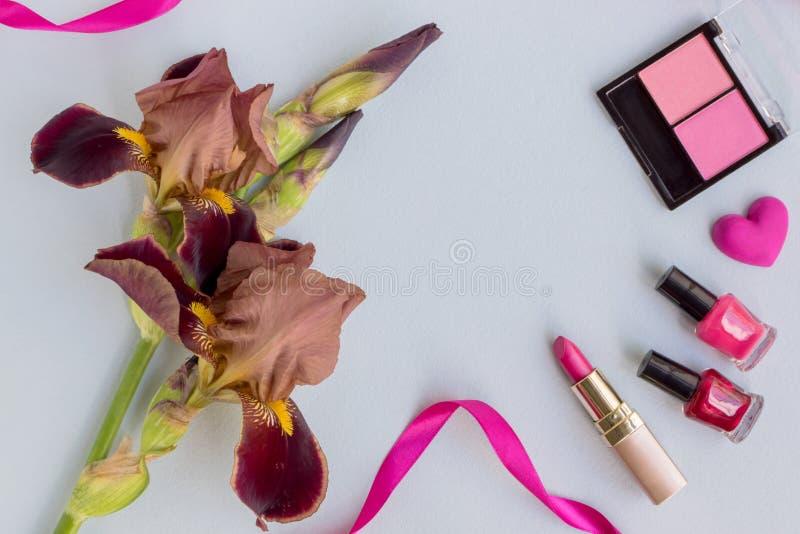 Plant lekmanna- skrivbord med irisblomman fotografering för bildbyråer