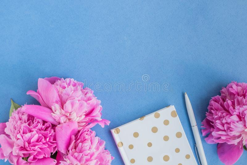 Plant lekmanna- skrivbord med rosa pioner royaltyfria foton