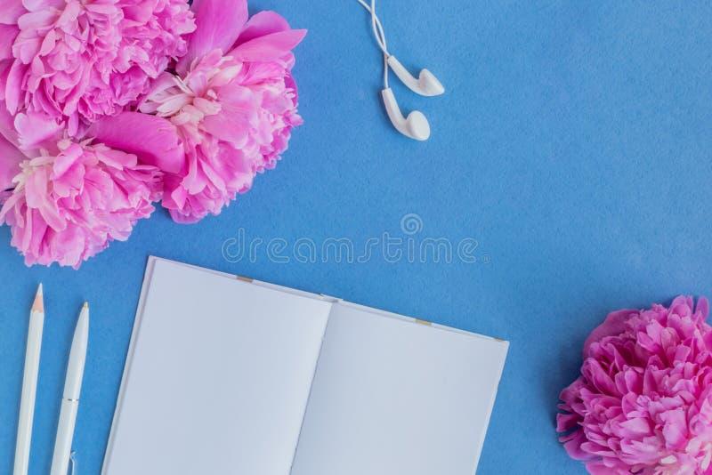 Plant lekmanna- skrivbord med rosa pioner arkivbild