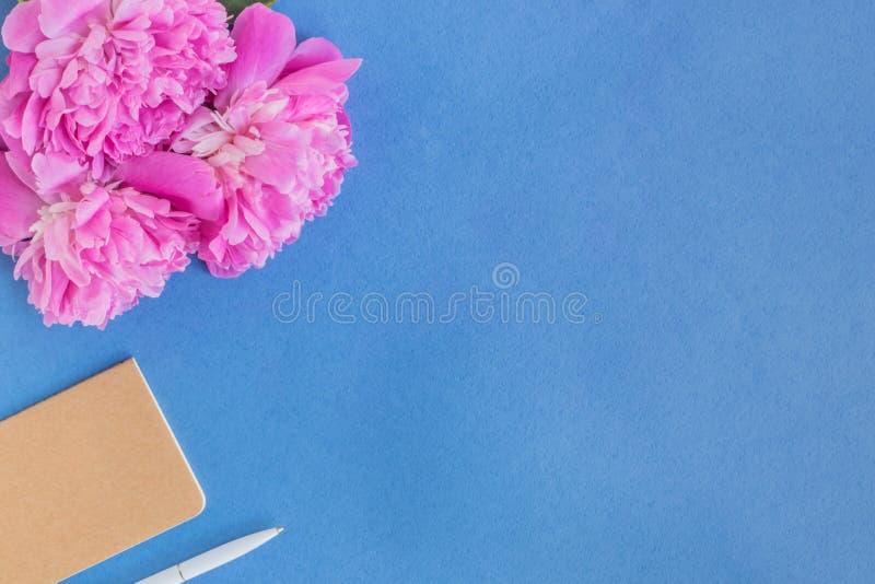 Plant lekmanna- skrivbord med rosa pioner arkivfoton