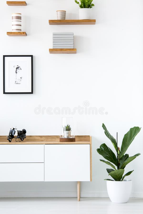 Plant next to wooden cupboard against white wall with poster in. Simple interior. Real photo stock image