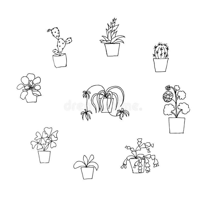 Plant in pot monochrome icon set oxalis, chlorophytum, orchid, pelargonium, schlumbergera. Haworthia, cactus design element stock vector illustration for web royalty free illustration