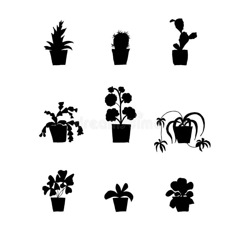 Plant in pot monochrome icon set oxalis, chlorophytum, orchid, pelargonium, schlumbergera, haworthia. Cactus design element stock vector illustration for web royalty free illustration