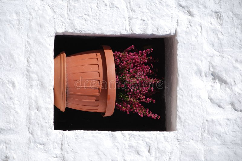 Plant Pot In Trullo Window 2 royalty free stock images