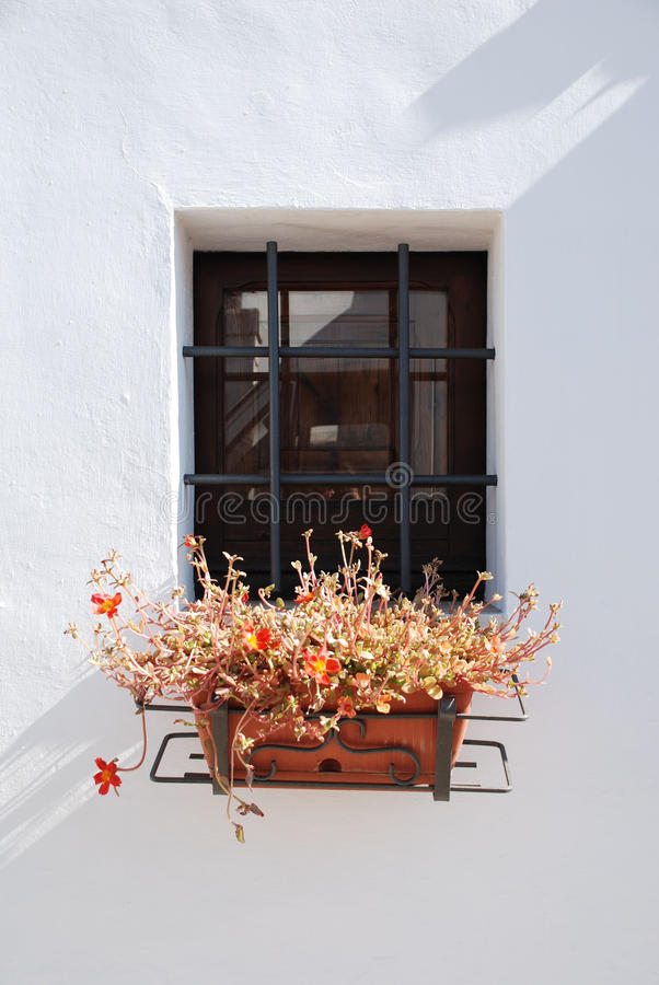 Plant Pot in Trullo Window. The window of a trullo in Alberobello (Puglia, southern Italy) with a plant pot. The trulli, which are protected under UNESCO World royalty free stock photos