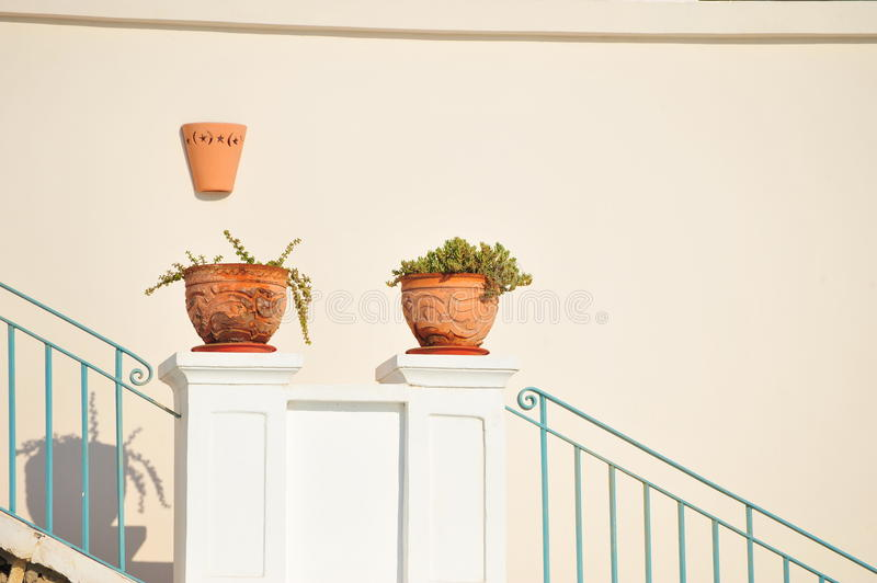 Download Plant pots stock photo. Image of entrance, pink, ceramic - 15507570