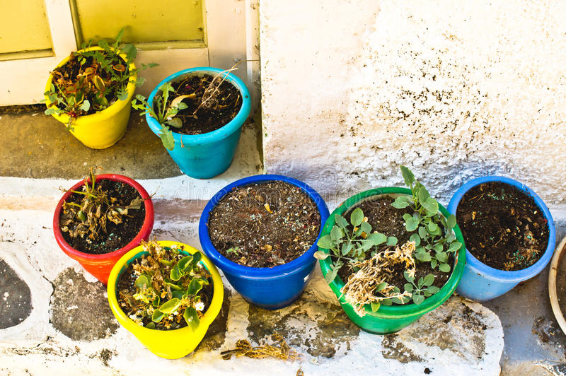 Plant pots royalty free stock photography