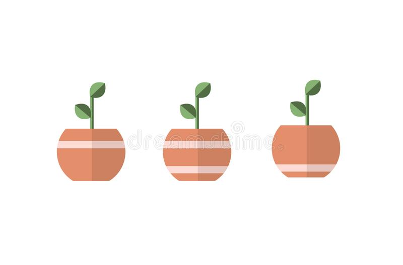 Plant in pots with lines. 3 different vectors, simple designs. Beautiful design stock illustration