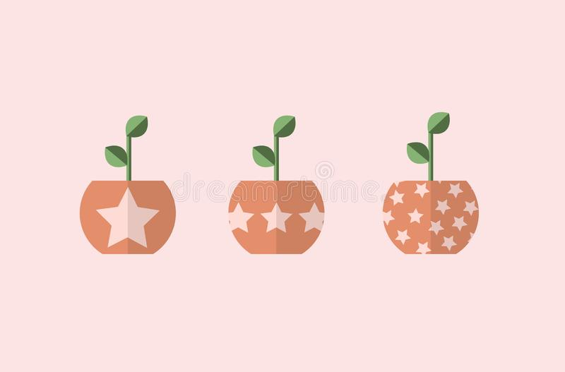 Plant in pots with stars. 3 different vectors, simple designs. Beautiful design vector illustration