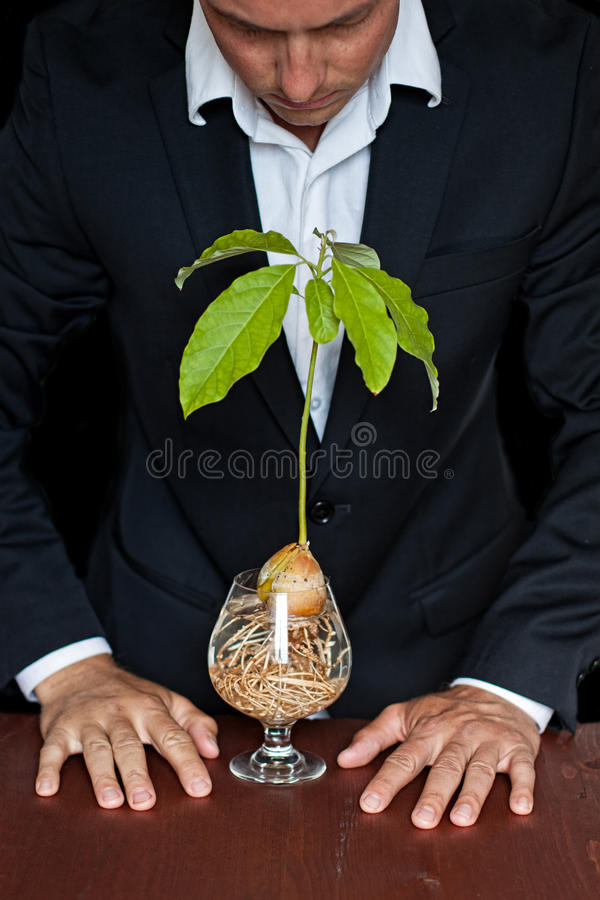 Plant Rights Stock Photos
