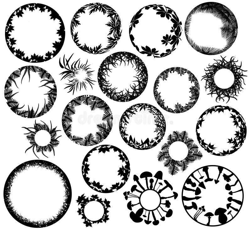 Plant rings vector illustration