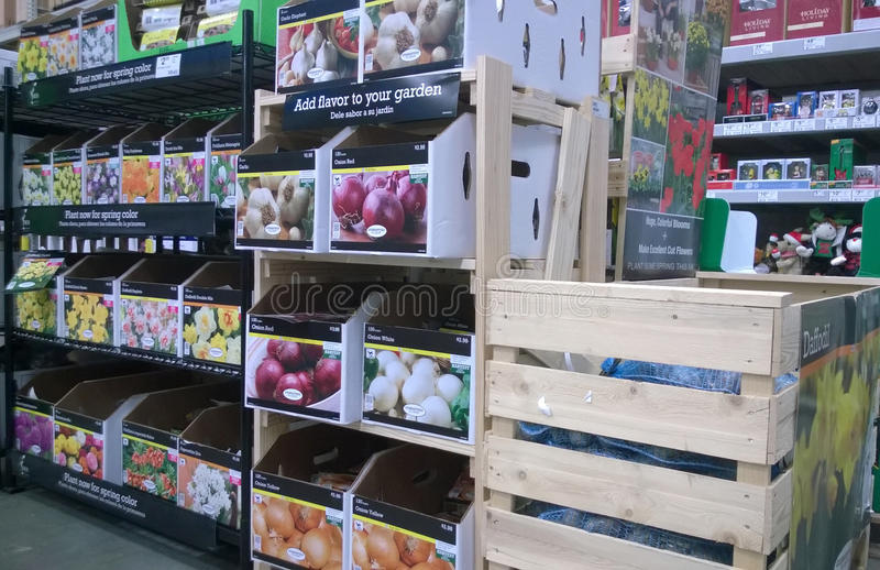 Plant seed on shelves royalty free stock image