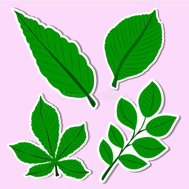 Plant of simple. Set Plant of simple color illustrations vector illustration