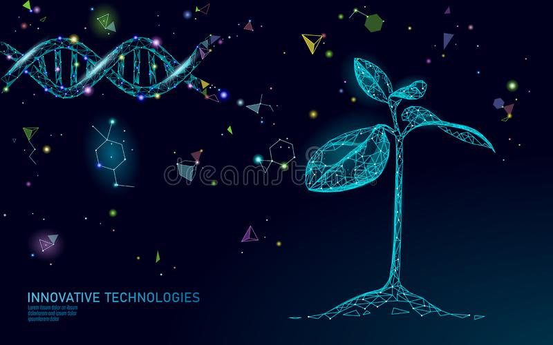 Plant sprout biotechnology abstract concept. 3D render seedling tree leaves DNA genome engineering vitamin supplement. Medical science life eco polygon stock illustration