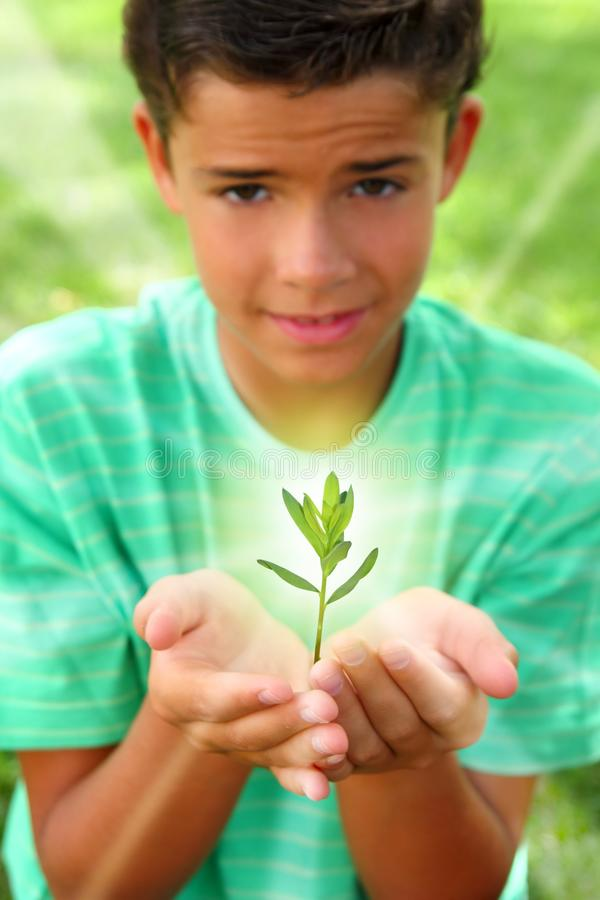 Download Plant Sprout Growing Glow Light Teenager Boy Hands Stock Image - Image of attractive, farming: 16381075