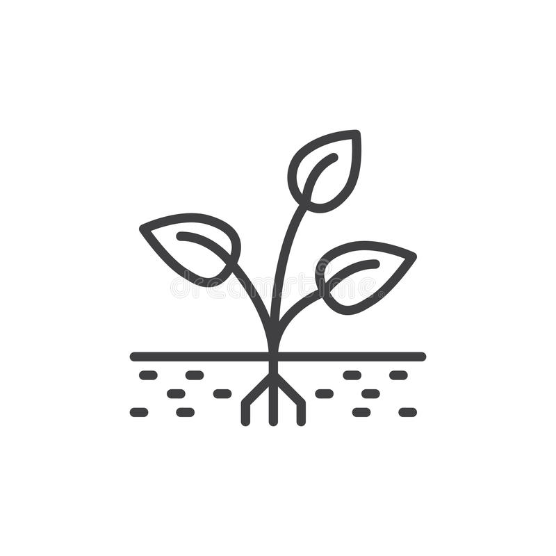 Plant, sprout line icon, outline vector sign, linear style pictogram isolated on white. Symbol, logo illustration. Editable stroke vector illustration