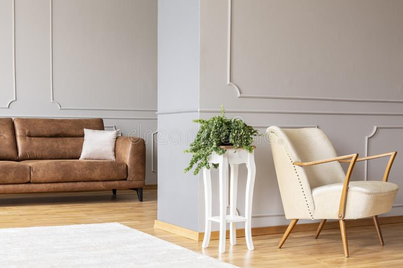 Plant on a stylish white wooden table in the middle of elegant living room with retro armchair and brown leather settee. With pillow royalty free stock photography