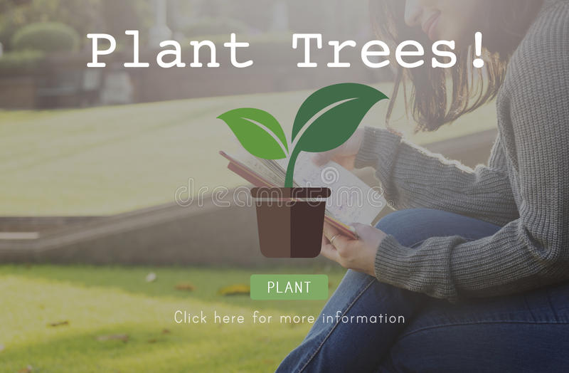 Plant Trees Ecology Environmental Conservation Growing Concept royalty free stock photos