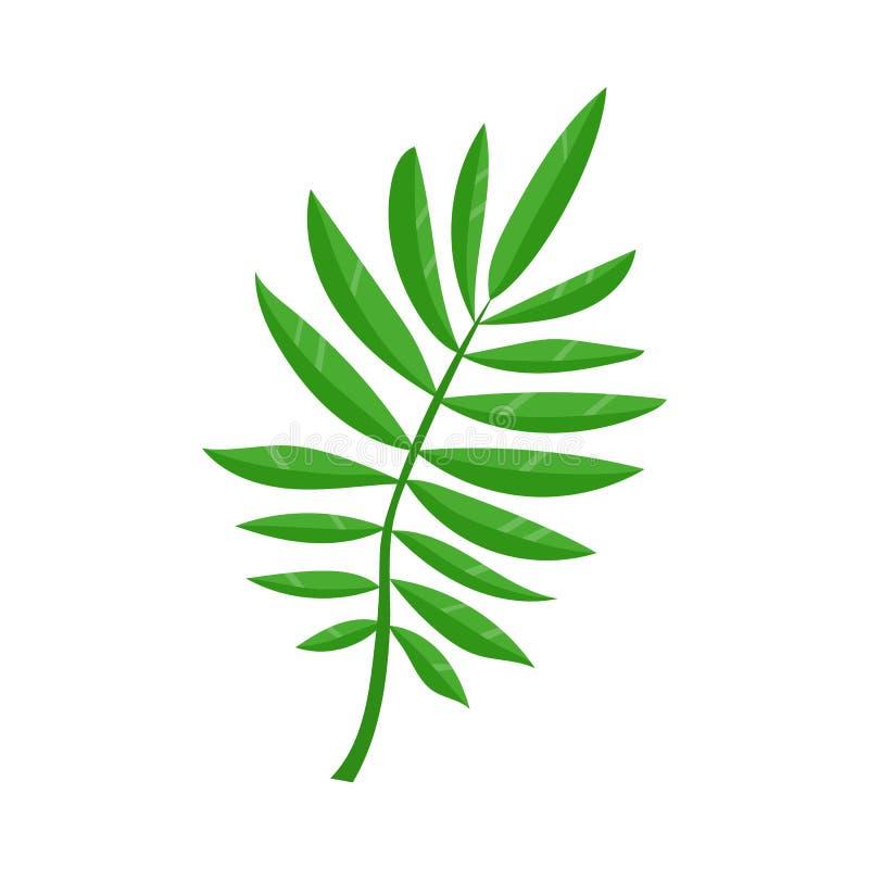 Plant tropiskt ormbunkeblad för vektor, sommarsymbol vektor illustrationer