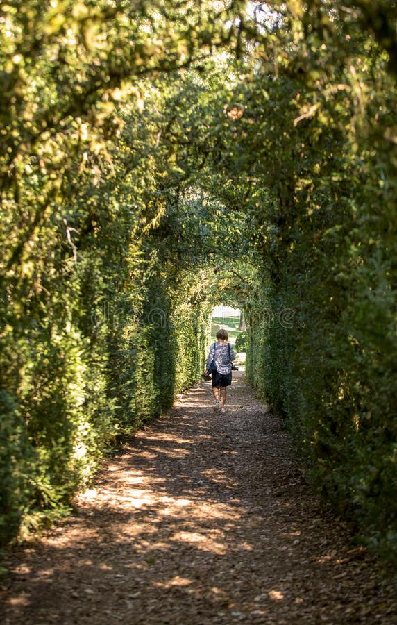 Plant Tunnel in  the gardens of the Jardins de Marqueyssac in the Dordogne region of France. Plant Tunnel in  the gardens of the Jardins de Marqueyssac in the royalty free stock image