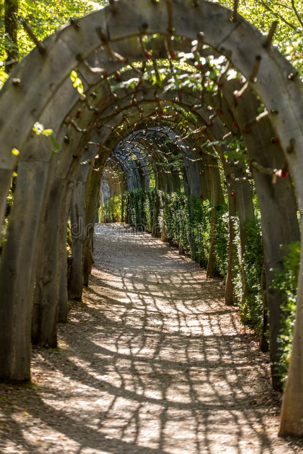 Plant Tunnel in the gardens of the Jardins de Marqueyssac in the Dordogne region of France. Plant Tunnel in the gardens of the Jardins de Marqueyssac in the royalty free stock photography