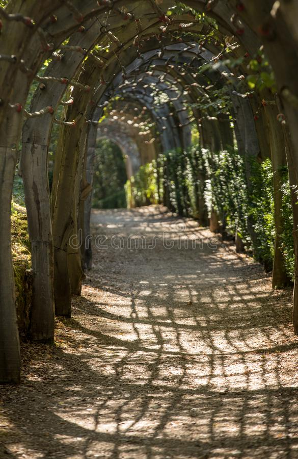Plant Tunnel in  the gardens of the Jardins de Marqueyssac in the Dordogne region of France. Plant Tunnel in  the gardens of the Jardins de Marqueyssac in the royalty free stock photo