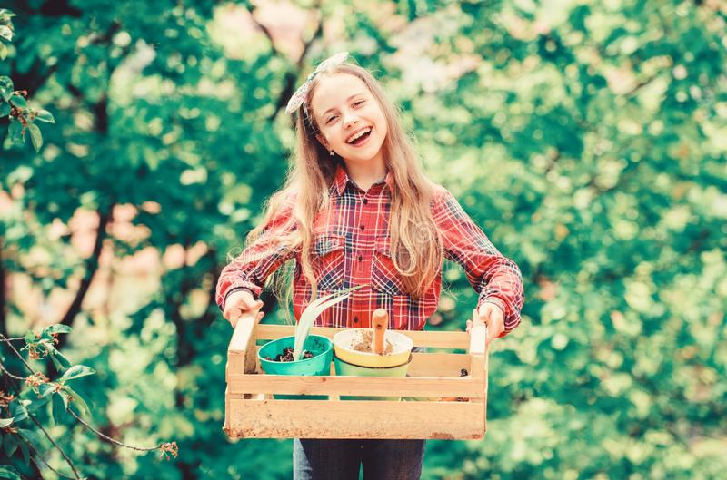 Plant veggies. Planting season. Popular garden care. Inspect garden daily spot insect trouble early. Gardening classes. Ecology education. Little girl planting stock photography