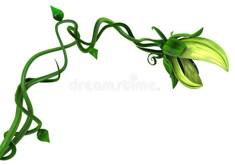 Plant Vines Bite stock image
