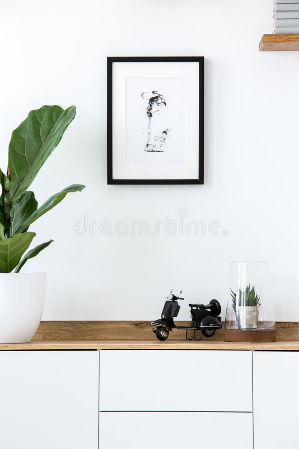 Plant on wooden white cupboard in simple living room interior wi stock photo