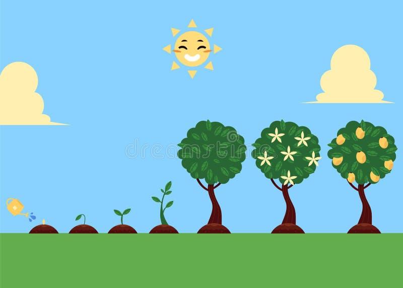 A plantação de árvores lisa do vetor encena o grupo de símbolos ilustração royalty free