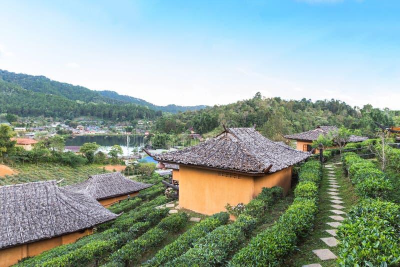 A plantação de chá da vila chinesa tailandesa da comunidade do rak da proibição é refugiados de Kuomintang do chinês em Pai, Mae  fotos de stock