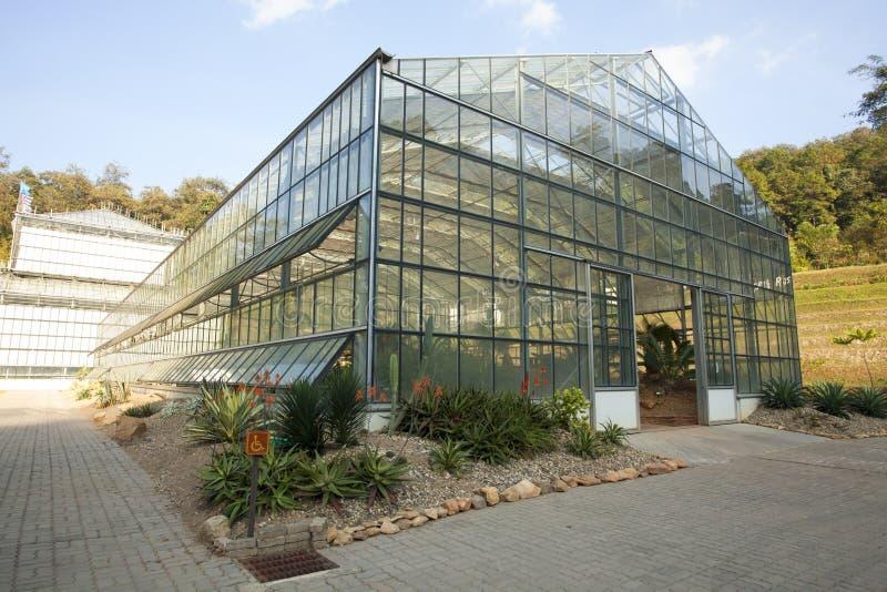 Plantação de vidro da casa fotos de stock royalty free