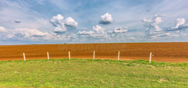 Plantação do cana-de-açúcar e céu nebuloso - coutryside de Brasil imagem de stock royalty free